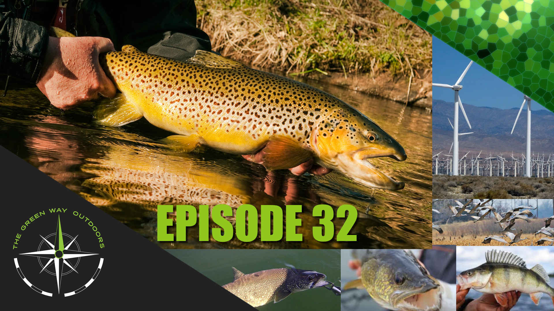 The Green Way Outdoors - Episode 32 - Value of Fish