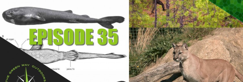 The Green Way Outdoors Episode 35