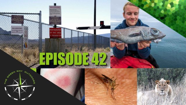 The Green Way Outdoors - Episode 42 - New Fish